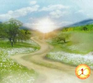 La via del risveglio luce